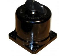 Пакетный выключатель ПВ 2-16 в корпусе IP30 карболит (16А/220,10А/380) Электротехник
